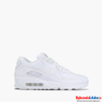 Nike Air Max 90 Leather 302519-113